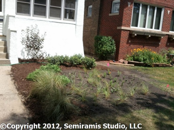 Rain garden built by LETS GO Chicago in 2012
