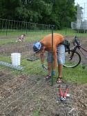 Grant building the pea trellis